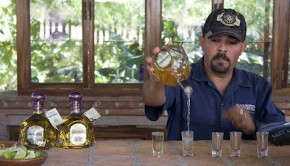 A bartender shows how to drink Tequila at Vinata Los Osuna, an agave plantation near Mazatlan, Mexico.