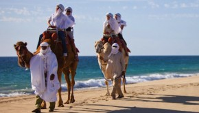 Yes, it's a Mexico beach! The Outback & Camel Safari from Cabo Adventures, in Los Cabos.