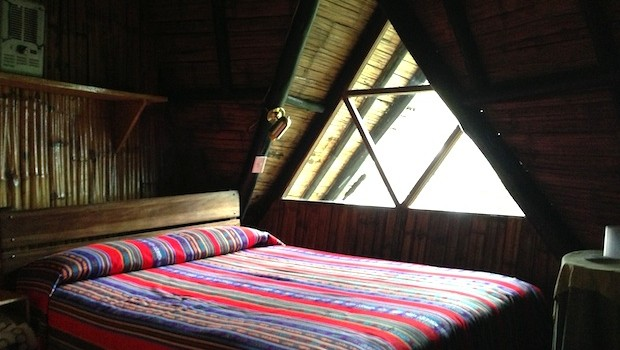 My room at Bellavista lodge in Ecuador had nature views.