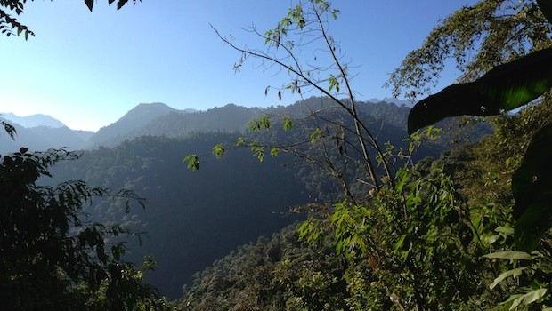Ecuador mountain views by morning at Bellavista.