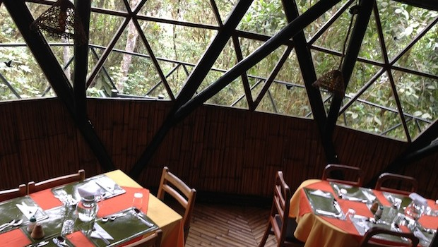 The dining room looks onto the cloud forest at Bellavista lodge in Ecuador.