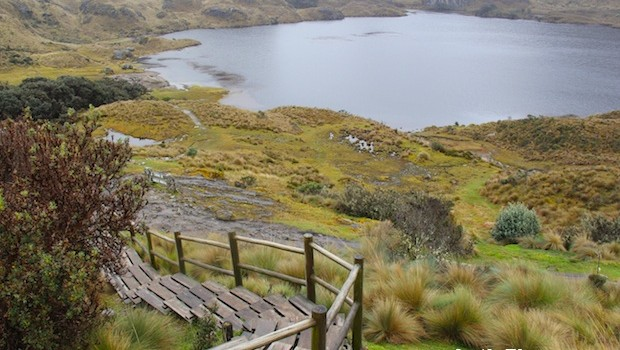Hiking trail and lake at El Cajas national park, in Ecuador.