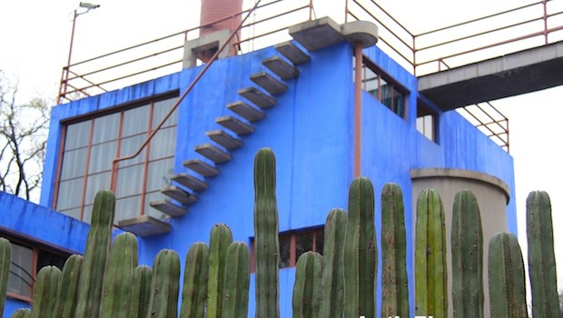 Cactus plants provide a dramatic natural fence for the Frida Kahlo home.
