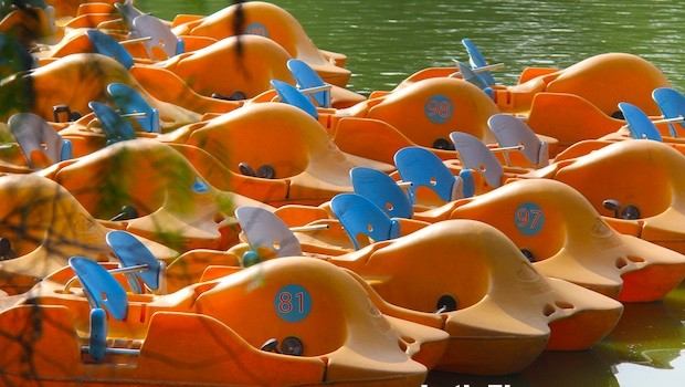 Pedal boats in Chapultepec Park, Mexico City.