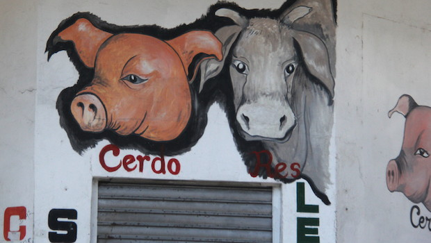 Wall mural ads in Colon, Panama.