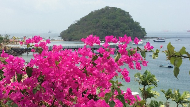 Colorful flowers and great views make Taboga island, Panama extra pretty.