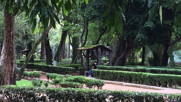 Mexico City Travel: 7 Things To Do in the Condesa District ... |Condesa District Mexico City