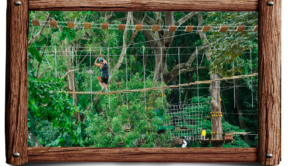 Jaco Ropes is a ropes course that Jason opened  in Costa Rica.