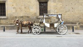 Traditional transportation in historic Guadalajara, Mexico.
