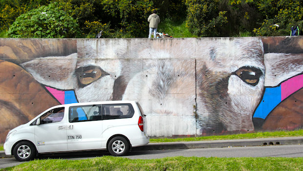 Animals and nature are the focus for some street art and graffiti in Bogota.
