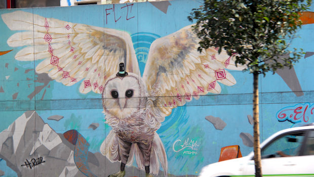 Animals indigenous to Bogota appear in several works of street art.