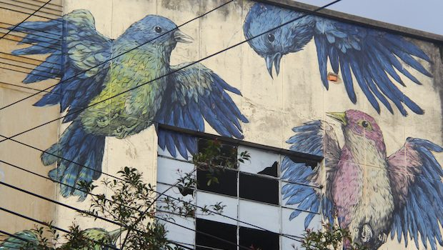 Giant birds bring new life to an abandoned building in Bogota.