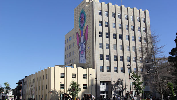 A mural of a giant chihuahua graces some 20th century architecture in the eponymous city.